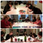 Lingo School Exams